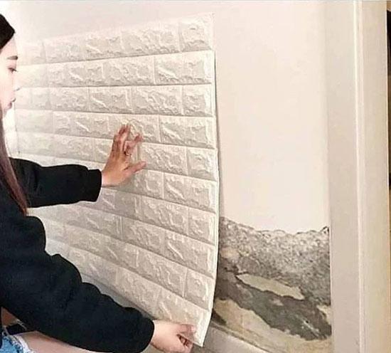 دیوارپوش Wall Plugs
